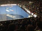 Handball-Laenderspiel 05.04.14 in Lingen AM3